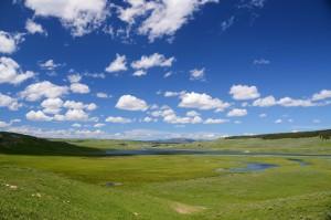 hayden-valley-63564_1280